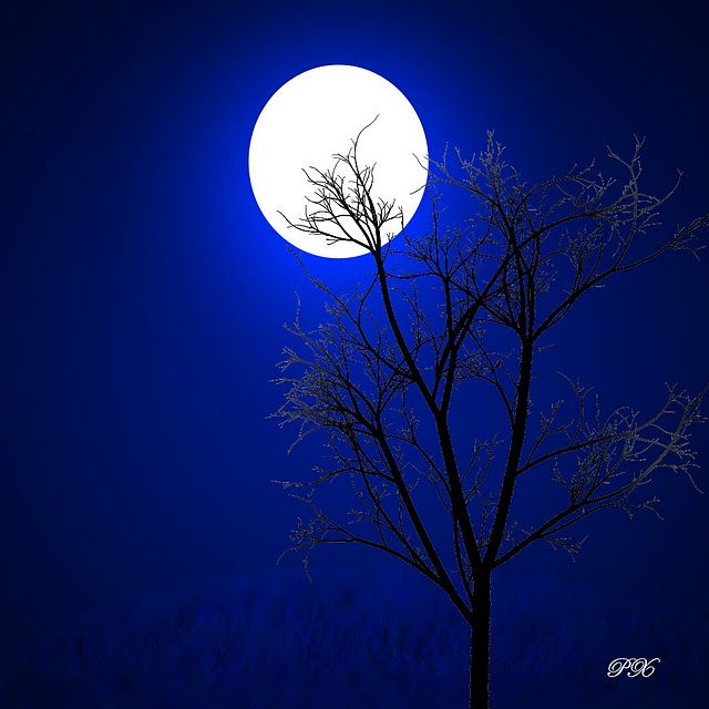 moon-wallpaper